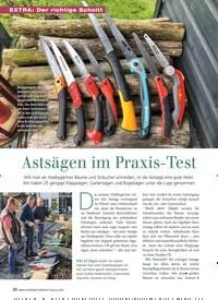 Titelbild der Ausgabe 2/2019 von Astsägen im Praxis-Test. Zeitschriften als Abo oder epaper bei United Kiosk online kaufen.