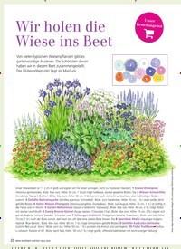 Titelbild der Ausgabe 3/2019 von Wir holen die Wiese ins Beet. Zeitschriften als Abo oder epaper bei United Kiosk online kaufen.
