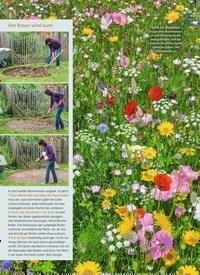 Titelbild der Ausgabe 4/2019 von Aussaatzeit für Blumenwiesen. Zeitschriften als Abo oder epaper bei United Kiosk online kaufen.