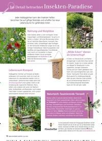 Titelbild der Ausgabe 6/2019 von Im Detail betrachtet Insekten-Paradiese. Zeitschriften als Abo oder epaper bei United Kiosk online kaufen.