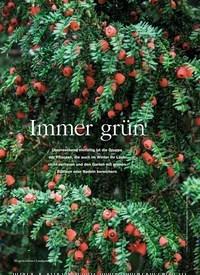 Titelbild der Ausgabe 6/2018 von Immer grün. Zeitschriften als Abo oder epaper bei United Kiosk online kaufen.