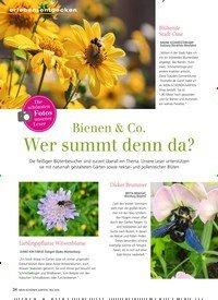 Titelbild der Ausgabe 5/2019 von Die schönsten Fotos unserer Leser:Bienen & Co. Wer summt denn da?. Zeitschriften als Abo oder epaper bei United Kiosk online kaufen.