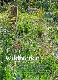Titelbild der Ausgabe 2/2019 von Blüten für Wildbienen. Zeitschriften als Abo oder epaper bei United Kiosk online kaufen.