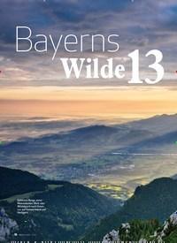 Titelbild der Ausgabe 11/2019 von Bayerns Wildse 13: Topthema. Zeitschriften als Abo oder epaper bei United Kiosk online kaufen.
