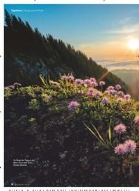 Titelbild der Ausgabe 4/2020 von Vergessene Pfade: Bayerische Perlen. Zeitschriften als Abo oder epaper bei United Kiosk online kaufen.