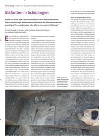 Titelbild der Ausgabe 3/2020 von Forschung Leben im Altpaläolithikum Norddeutschlands: Elefanten in Schöningen. Zeitschriften als Abo oder epaper bei United Kiosk online kaufen.