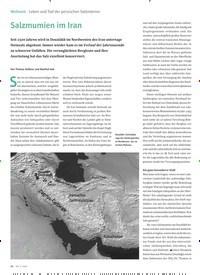 Titelbild der Ausgabe 5/2020 von Leben und Tod der persischen Salzmänner: Salzmumien im Iran. Zeitschriften als Abo oder epaper bei United Kiosk online kaufen.