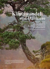 Titelbild der Ausgabe 3/2019 von KLIMAWANDEL HEUTE: Klimawandel und Wildtiere. Zeitschriften als Abo oder epaper bei United Kiosk online kaufen.