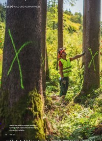 Titelbild der Ausgabe 4/2019 von WALD UND KLIMAWANDEL: Der Wald in Zeiten des Klimawandels. Zeitschriften als Abo oder epaper bei United Kiosk online kaufen.