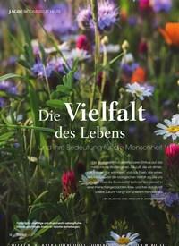 Titelbild der Ausgabe 4/2020 von BIODIVERSITÄT HEUTE: Die Vielfalt des Lebens und ihre Bedeutung für die Menschheit. Zeitschriften als Abo oder epaper bei United Kiosk online kaufen.