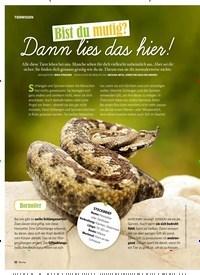 Titelbild der Ausgabe 2/2019 von TIERWISSEN: Bist du mutig? Dann lies das hier!. Zeitschriften als Abo oder epaper bei United Kiosk online kaufen.