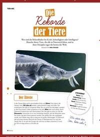 Titelbild der Ausgabe 3/2019 von TIER-ABC: Die Rekorde der Tiere. Zeitschriften als Abo oder epaper bei United Kiosk online kaufen.