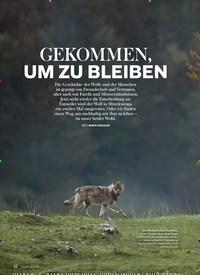 Titelbild der Ausgabe 5/2018 von GEKOMMEN, UM ZU BLEIBEN. Zeitschriften als Abo oder epaper bei United Kiosk online kaufen.