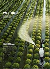 Titelbild der Ausgabe 3/2019 von WELTBILD. Zeitschriften als Abo oder epaper bei United Kiosk online kaufen.