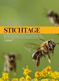 Titelbild der Ausgabe 4/2019 von BIOLOGIE: STICHTAGE. Zeitschriften als Abo oder epaper bei United Kiosk online kaufen.