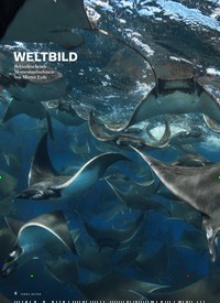 Titelbild der Ausgabe 5/2019 von WELTBILOD. Zeitschriften als Abo oder epaper bei United Kiosk online kaufen.