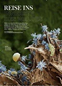 Titelbild der Ausgabe 5/2019 von REISE INS INNERSTE DES WALDES+. Zeitschriften als Abo oder epaper bei United Kiosk online kaufen.
