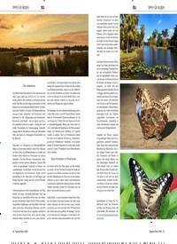 Titelbild der Ausgabe 3/2020 von FEINER SAND AM GOLF VON MEXIKO TAMPA / ST. PETERSBURG/CLEARWATER. Zeitschriften als Abo oder epaper bei United Kiosk online kaufen.