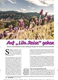 """Titelbild der Ausgabe 8/2020 von Auf """"Lila.Reise"""" gehen. Zeitschriften als Abo oder epaper bei United Kiosk online kaufen."""
