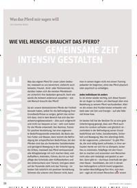 Titelbild der Ausgabe 4/2019 von KOLUMNE: GEMEINSAME ZEIT INTENSIV GESTALTEN. Zeitschriften als Abo oder epaper bei United Kiosk online kaufen.