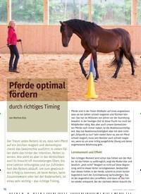 Titelbild der Ausgabe 1/2020 von Pferde optimal fördern durch richtiges Timing. Zeitschriften als Abo oder epaper bei United Kiosk online kaufen.
