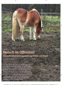 Titelbild der Ausgabe 1/2020 von Matsch im Offenstall. Zeitschriften als Abo oder epaper bei United Kiosk online kaufen.