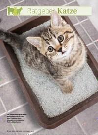 Titelbild der Ausgabe 9/2019 von Ratgeber Katze: Das stille Örtchen. Zeitschriften als Abo oder epaper bei United Kiosk online kaufen.