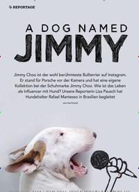 Titelbild der Ausgabe 5/2019 von REPORTAGE:A DOG NAMED JIMMY. Zeitschriften als Abo oder epaper bei United Kiosk online kaufen.