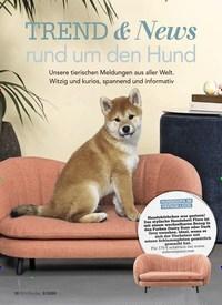Titelbild der Ausgabe 2/2020 von TREND & News rund um den Hund. Zeitschriften als Abo oder epaper bei United Kiosk online kaufen.