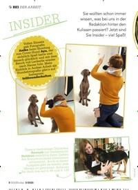 Titelbild der Ausgabe 3/2020 von BEI DER ARBEIT:INSIDER. Zeitschriften als Abo oder epaper bei United Kiosk online kaufen.