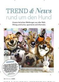 Titelbild der Ausgabe 3/2020 von TREND & News rund um den Hund. Zeitschriften als Abo oder epaper bei United Kiosk online kaufen.