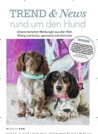Titelbild der Ausgabe 4/2020 von TREND & News rund um den Hund. Zeitschriften als Abo oder epaper bei United Kiosk online kaufen.
