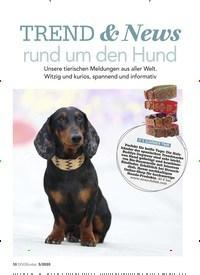 Titelbild der Ausgabe 5/2020 von TREND & News rund um den Hund. Zeitschriften als Abo oder epaper bei United Kiosk online kaufen.