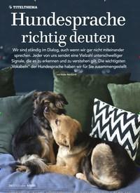 Titelbild der Ausgabe 5/2020 von Hundesprache richtig deuten. Zeitschriften als Abo oder epaper bei United Kiosk online kaufen.
