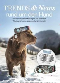 Titelbild der Ausgabe 7/2020 von TRENDS & News rund um den Hund. Zeitschriften als Abo oder epaper bei United Kiosk online kaufen.