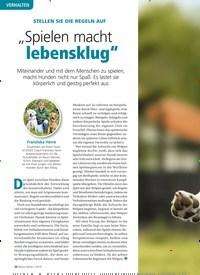 """Titelbild der Ausgabe 1/2019 von STELLEN SIE DIE REGELN AUF: """"Spielen macht lebensklug"""". Zeitschriften als Abo oder epaper bei United Kiosk online kaufen."""