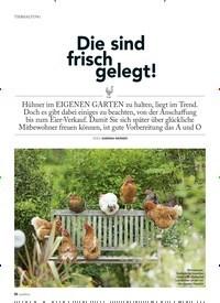 Titelbild der Ausgabe 1/2019 von TIERHALTUNG: Die sind frisch gelegt!. Zeitschriften als Abo oder epaper bei United Kiosk online kaufen.