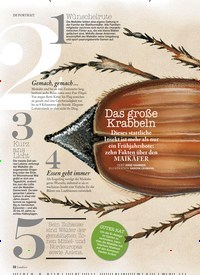 Titelbild der Ausgabe 1/2019 von IM PORTRAIT: Das große Krabbeln. Zeitschriften als Abo oder epaper bei United Kiosk online kaufen.