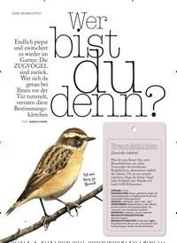 Titelbild der Ausgabe 1/2019 von TIERE BEOBACHTEN: Wer bist du denn?. Zeitschriften als Abo oder epaper bei United Kiosk online kaufen.