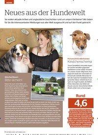 Titelbild der Ausgabe 9/2019 von NEWS: Neues aus der Hundewelt. Zeitschriften als Abo oder epaper bei United Kiosk online kaufen.