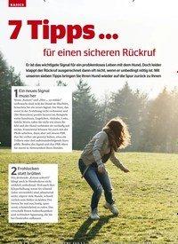Titelbild der Ausgabe 9/2019 von BASICS: 7 Tipps… für einen sicheren Rückruf. Zeitschriften als Abo oder epaper bei United Kiosk online kaufen.