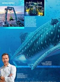 Titelbild der Ausgabe 1/2019 von DAS BLAUE WUNDER. Zeitschriften als Abo oder epaper bei United Kiosk online kaufen.