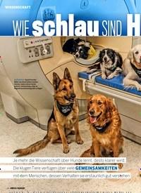 Titelbild der Ausgabe 4/2019 von WIE schlau SIND Hunde WIRKLICH?. Zeitschriften als Abo oder epaper bei United Kiosk online kaufen.