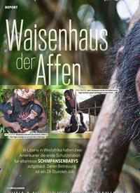 Titelbild der Ausgabe 3/2020 von Waisenhaus der Affen. Zeitschriften als Abo oder epaper bei United Kiosk online kaufen.