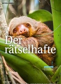 Titelbild der Ausgabe 4/2020 von Der Rätselhafte: Schlaf der Tiere. Zeitschriften als Abo oder epaper bei United Kiosk online kaufen.