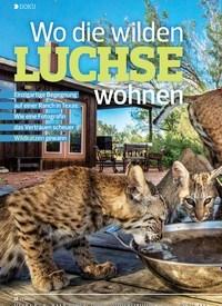 Titelbild der Ausgabe 1/2020 von Wo die wilden LUCHSE wohnen. Zeitschriften als Abo oder epaper bei United Kiosk online kaufen.
