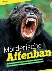 Titelbild der Ausgabe 19/2018 von DOKU: Mörderische Affenbande. Zeitschriften als Abo oder epaper bei United Kiosk online kaufen.