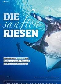 Titelbild der Ausgabe 2/2019 von DOKU: Sanften:DIE RIESEN. Zeitschriften als Abo oder epaper bei United Kiosk online kaufen.