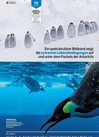 Titelbild der Ausgabe 9/2019 von DOKU: Eiskaltes: PARADIES. Zeitschriften als Abo oder epaper bei United Kiosk online kaufen.