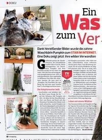 Titelbild der Ausgabe 12/2019 von DOKU: Ein Was chbär zumVer lieben. Zeitschriften als Abo oder epaper bei United Kiosk online kaufen.